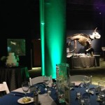 Orlando Science Center Wedding Dino Digs Lighting